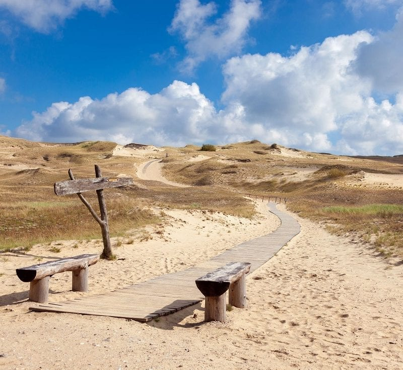 59467245 - wooden walkway on the sand dunes, curonian spit, lithuania